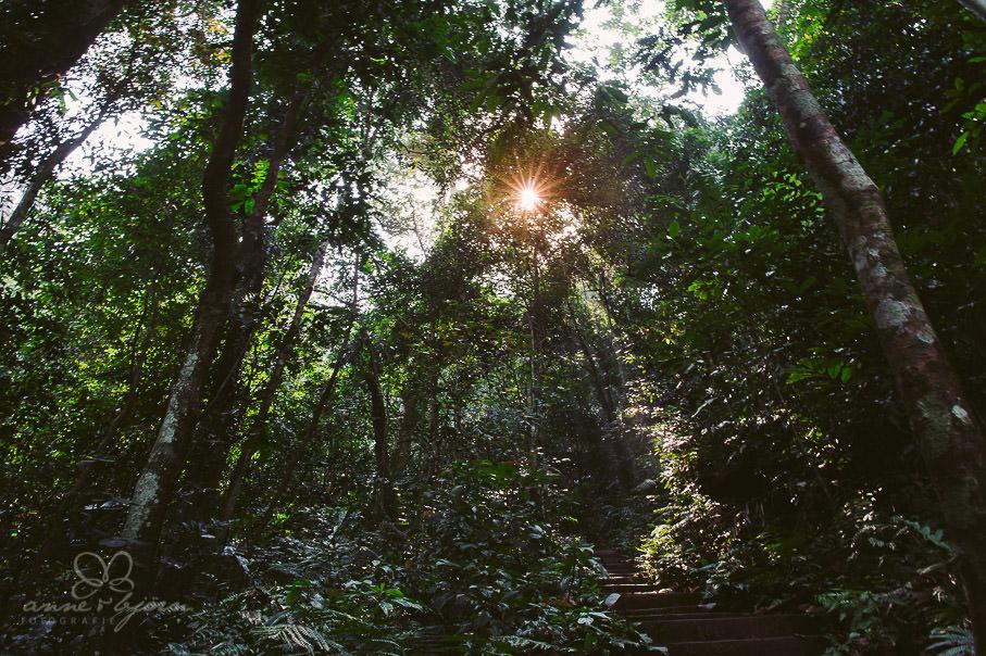 0010 vietnam ii aub 21579 - Vietnam 2013 - Vom Schmetterlingsdschungel in unterirdische Paradiese