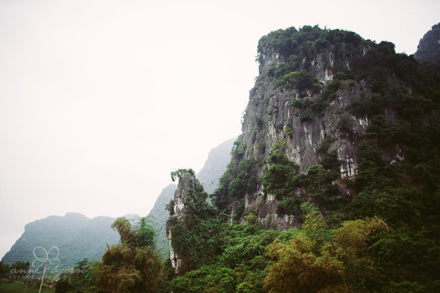 0029 vietnam ii aub 21737 - Vietnam 2013 - Vom Schmetterlingsdschungel in unterirdische Paradiese