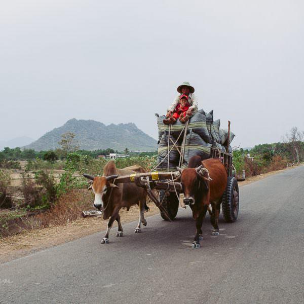 Vietnam 2013 - mit dem Motorrad durch's Hochland und zurück ans Meer