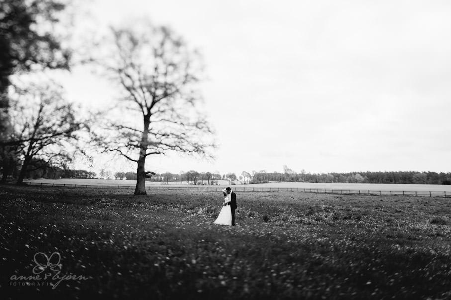 0049 run aub 8192 - Hochzeit auf Gut Thansen - Rita und Niko