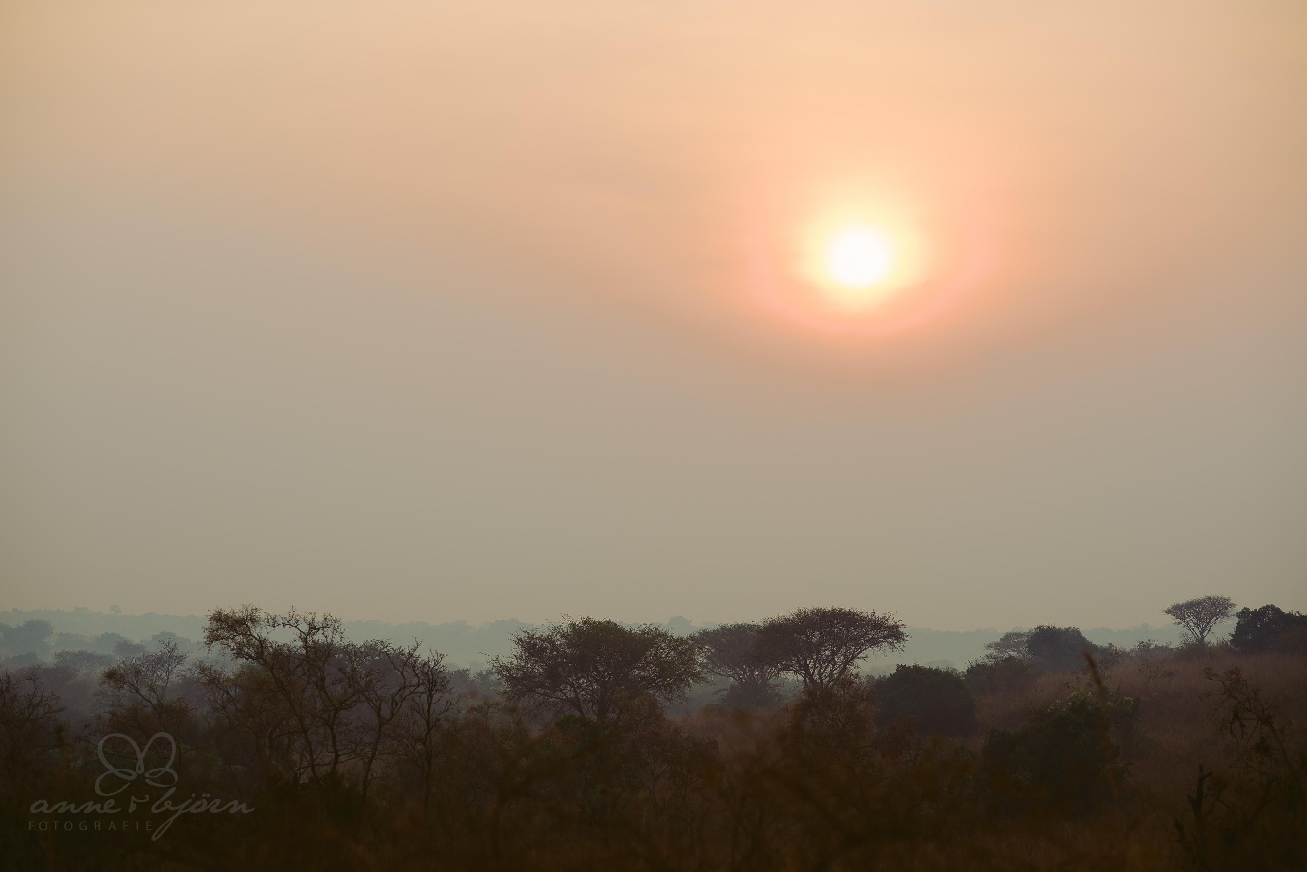 0021 uganda anneundbjoern aub 4126 2 - This is Uganda (1/2) - 2.500 km mit Jeep & Zelt durchs Land