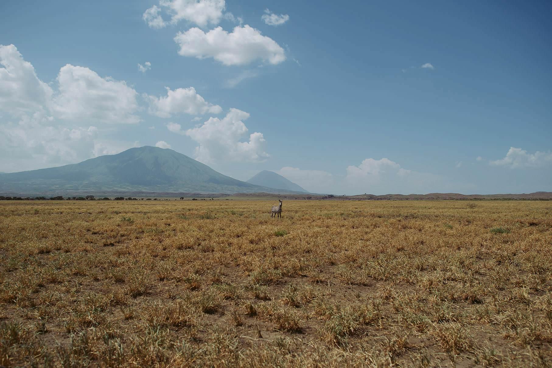 0016 tansania nd8 9515 anne bjoern fotografie hochzeitsfotograf hamburg - This is Tanzania - Serengeti, Kilimanjaro & Sansibar