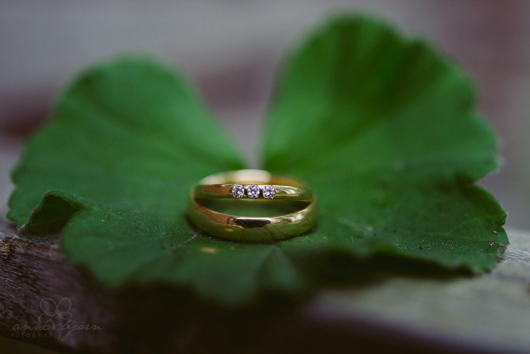 0096 aub 812 9847 - Hochzeit auf Gut Thansen - Anja & Björn