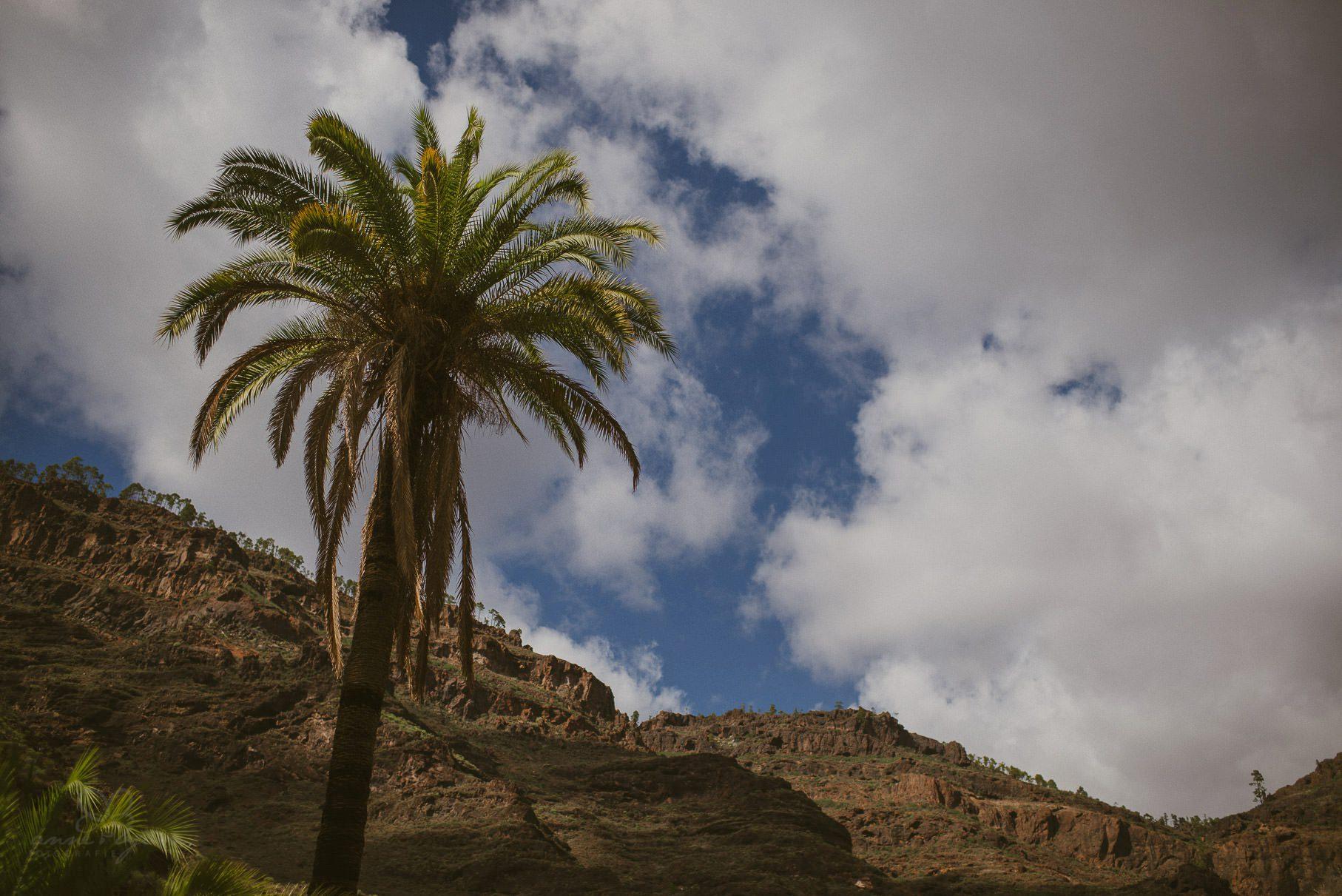 0063 lug d75 6185 - Hochzeit auf Gran Canaria - Linda & Gerald (Elopement)