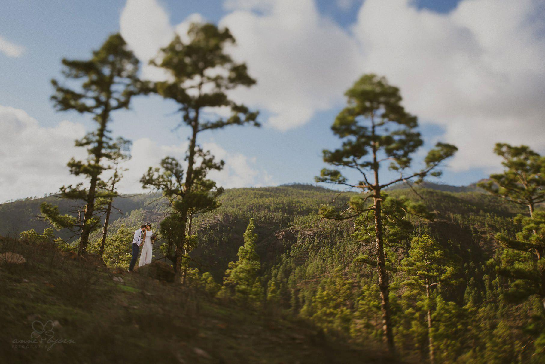 0102 lug d75 7073 - Hochzeit auf Gran Canaria - Linda & Gerald (Elopement)