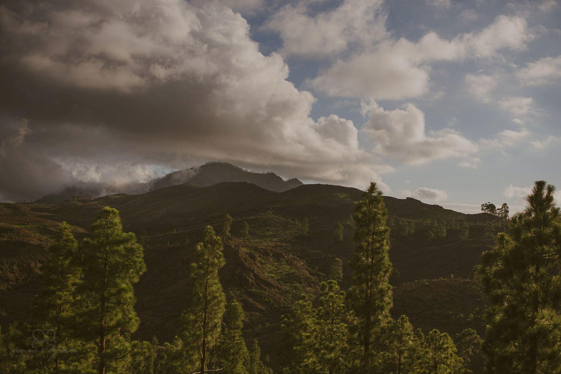 0106 lug d75 7102 - Hochzeit auf Gran Canaria - Linda & Gerald (Elopement)