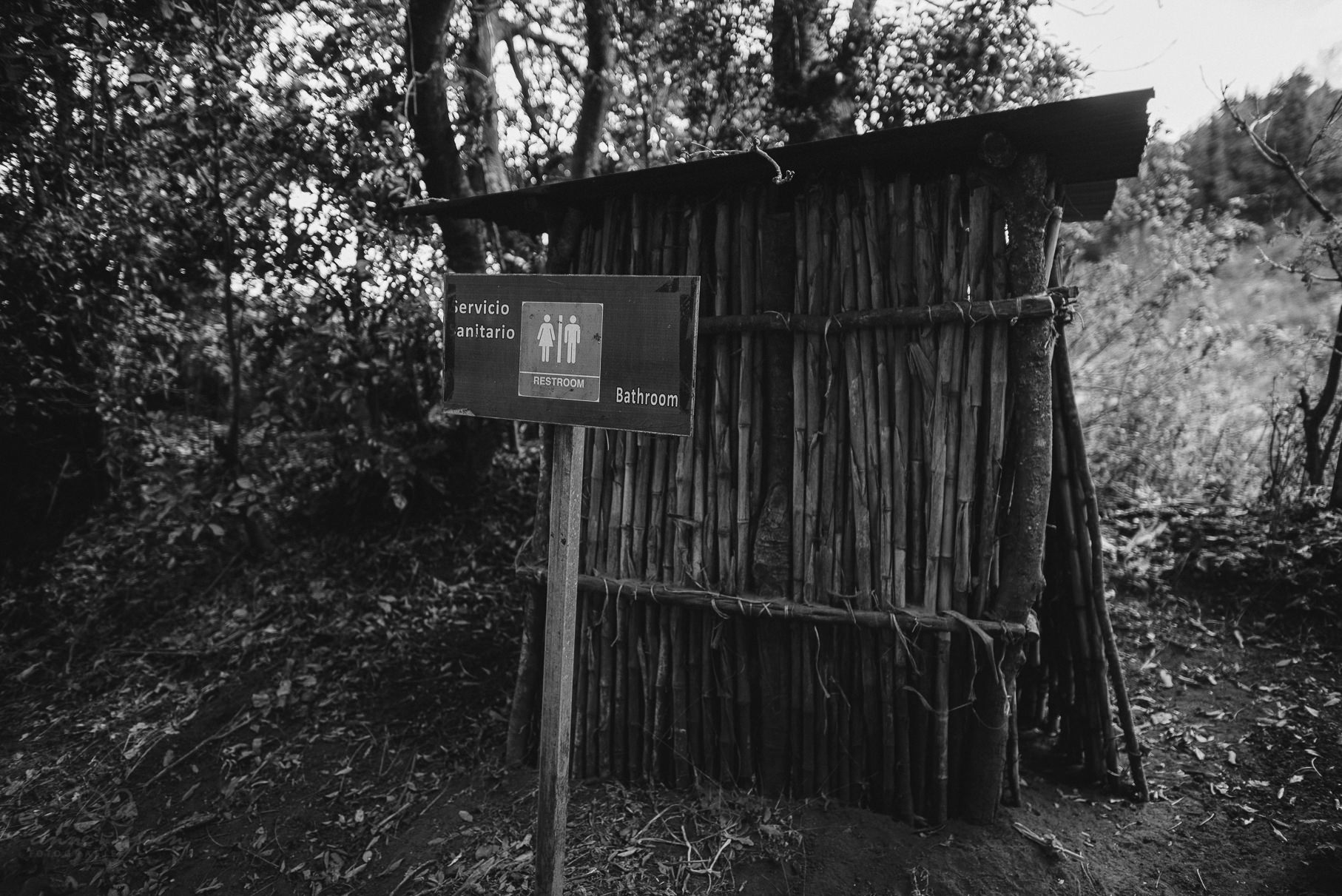 0069 anne und bjoern guatemala d75 9565 - 4 Wochen durch Guatemala - backpacking durch Mittelamerika