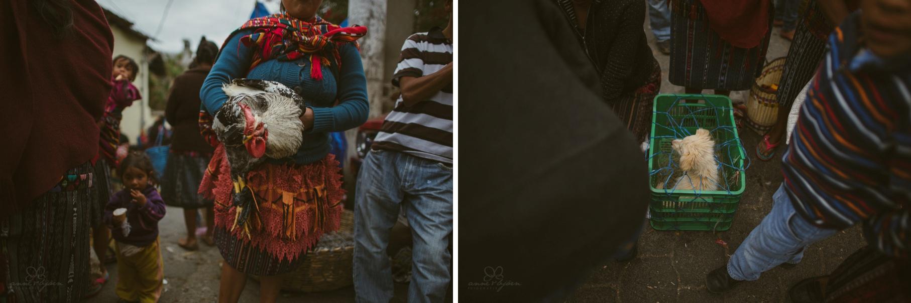 0126 anne und bjoern guatemala d75 2563 - 4 Wochen durch Guatemala - backpacking durch Mittelamerika
