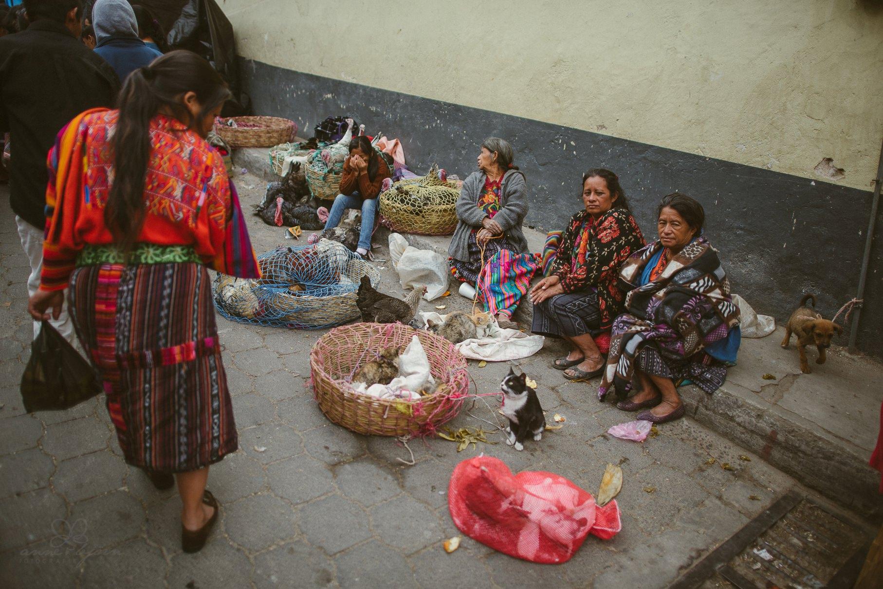 0133 anne und bjoern guatemala d75 2623 - 4 Wochen durch Guatemala - backpacking durch Mittelamerika