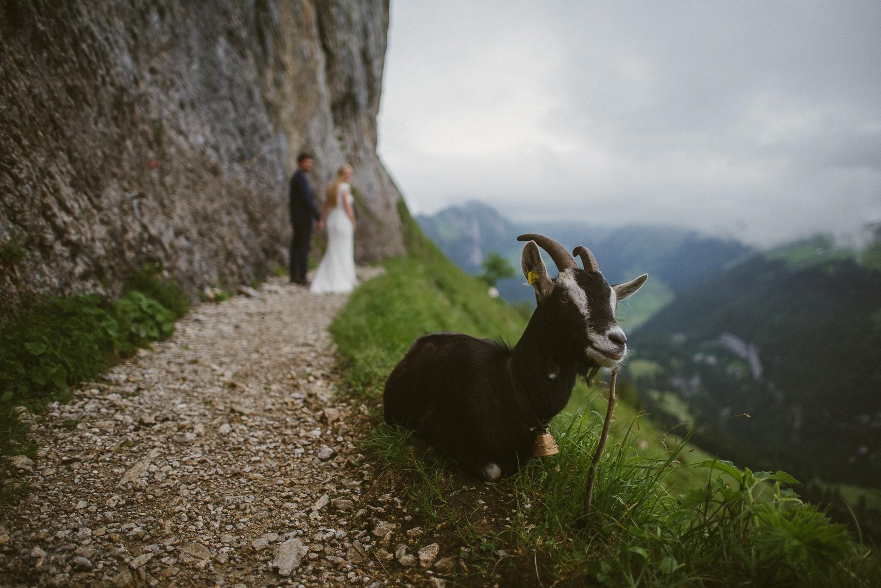 0025 anne und bjoern suc schweiz d75 3193 - After Wedding Shooting in der Schweiz - Sabrina & Christoph