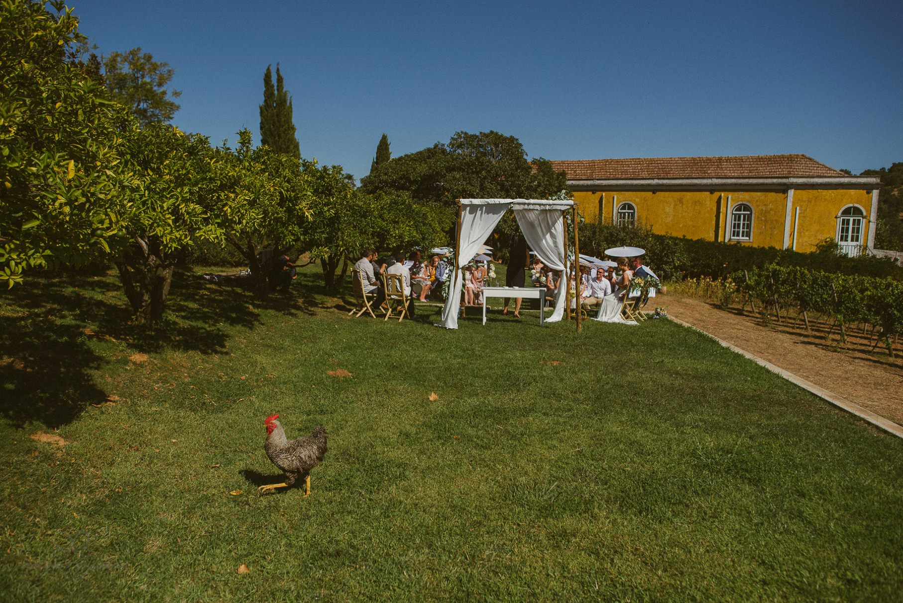 0044 anna olli portugal destination wedding d76 4335 - Hochzeit in Portugal - Quinta de Santa´Ana